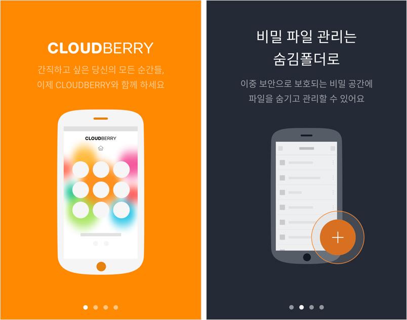 160824-cloudberry-TIP_6